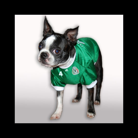 PERSONALIZED Seleccion de Mexico Dog Soccer Jersey pet shirt South Africa 2010
