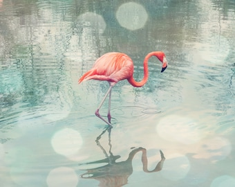 flamingo art, coral bathroom wall art, flamingo photograph, flamingo print, teal and coral art, flamingo beach decor, flamingo nursery art