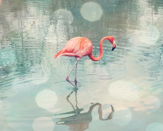 flamingo art, coral bathroom wall art, flamingo photograph, flamingo print, teal and coral art, flamingo beach decor, flamingo nursery art