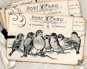 Gift Tags - Birds On A Branch Postcard  Hang Tags Labels Place Cards Escort Cards Wedding Tags Vintage