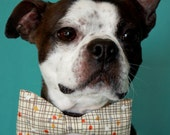 Retro Inspired Dog Bow-tie