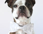 Grey and White Floral Dog Bow-tie - Wedding Accessories For Dogs - Bridal
