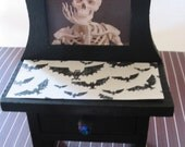 SALE Shelf Top Skeleton Vanity