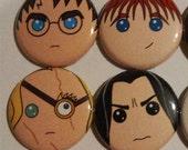 Harry Potter Magnet Set (8 Pack)