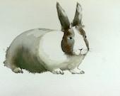 Spring Rabbit-- Original Watercolor Painting