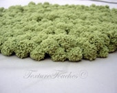 Green Round Textured Baby Blanket Photo Prop in Mossy Mounds colors