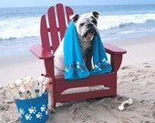 BULLDOG on ADIRONDACK CHAIR on the beach n CA 5x5 photograph Marie Dolphin