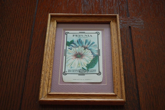 "Antique 1915 ""Petunia""  Burt's Seed Packet Stone Lithograph"