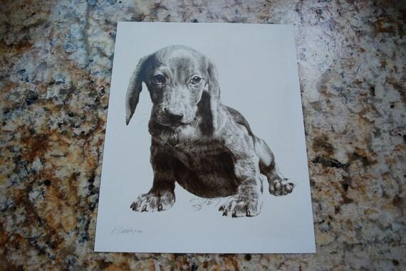 Vintage 8 x 10 Dachshund Puppy Artist Signed Print