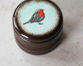 Red Breasted Robin - Bird Pill Box