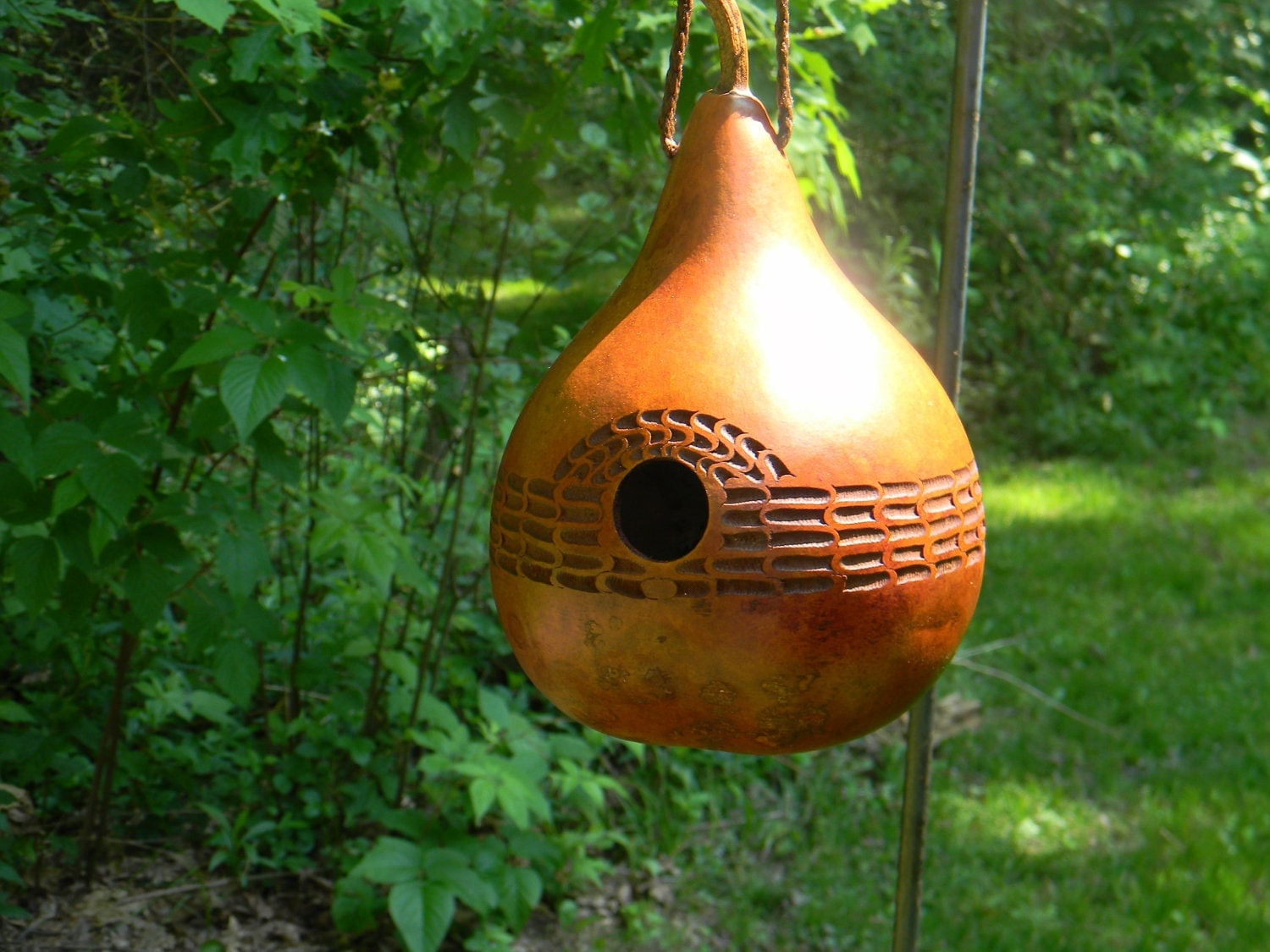 Chip carved gourd bird house by wetdogstudios on etsy