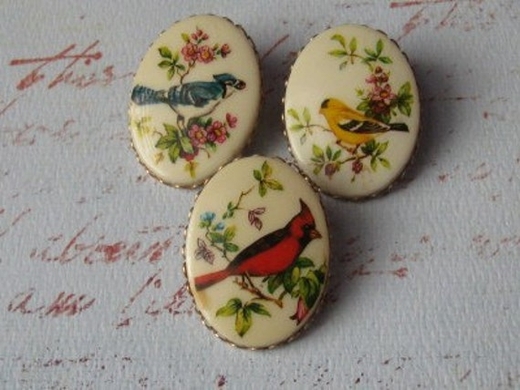 On sale Vintage Small Lot of Bird Brooches Cameos