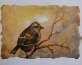 Sepia Sparrow Series, Set of 4 Prints