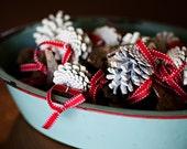 Set of 6-White Pinecone Ornaments