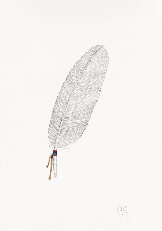 Feather on white - original illustration on paper