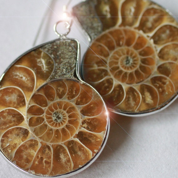 A Moment in Time - Beautiful Ammonite Fossil Sterling Silver Earrings