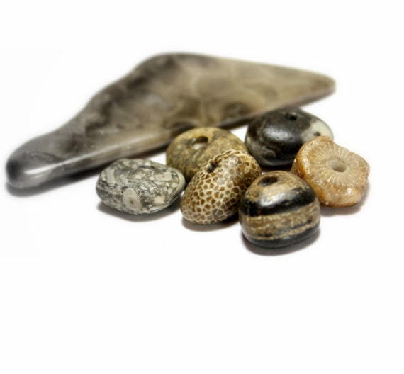 """Beach Stone Jewelry Spacers- Genuine Drilled Fossil and Pebble Rondelle's- Pandora Style Beads- """"Sea Story"""" by Allybeans"""
