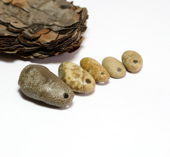"""Stones Jewelry Supplies- Drilled Fossil Pebbles River Rocks Beadwork- Brown Natural Earthy Supply- """"Mixed Nuts"""" by Allybeans"""