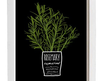 "ROSEMARY Kitchen Art Print 11""x15"" - archival fine art giclée print"