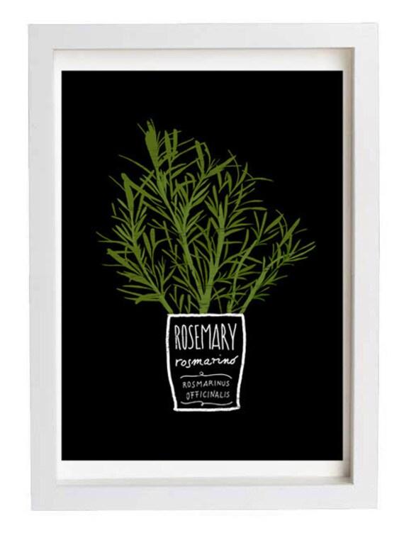 "ROSEMARY Kitchen Art Print 11""x15"" - archival fine art giclée print"