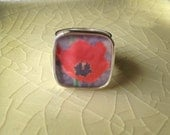 Red Poppy.  Silver Adjustable Photo Ring