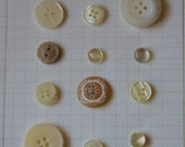 Cream Buttons for Sewing, Scrapbooking, Crafts
