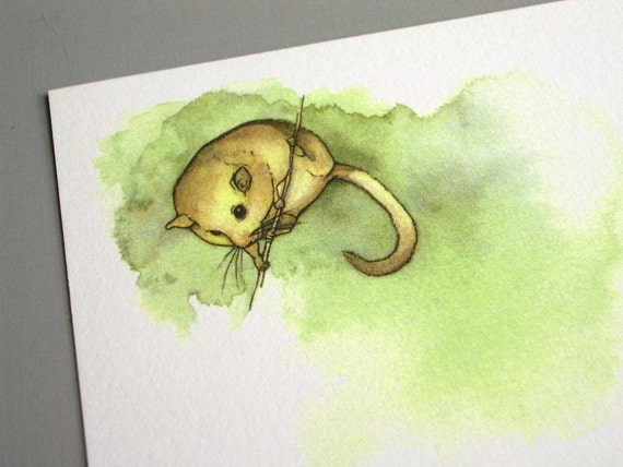 Dormouse - Postcard