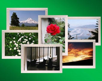 Favorites Blank Note Card Assortment