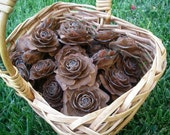 RESERVE -  Set of 25 Natural Rosette Pinecones