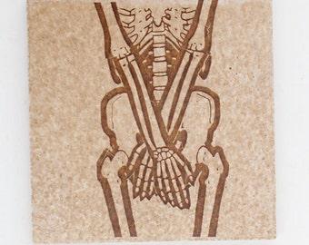 "Skeleton set of 3 tiles  4"" square"