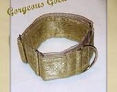 GOLD Martingale Greyhound dog collar