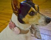 Wedding Dog Collar Necklace. Fancy Rose Pink. Fabric Flower Rhinestones. Headband Belt Hair Accessory for Photo Prop, Wedding