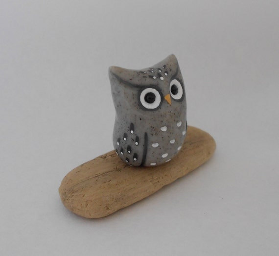 Little Grey Speckled Owl