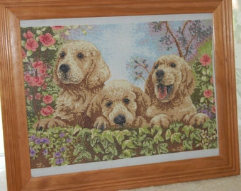 COMPLETED CROSS STITCH  - Three Golden Retreiver Puppies