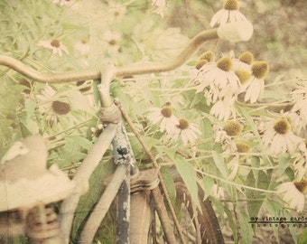 Vintage bike in flower garden-summer photography -summer decor-flower photography (5 x 7 Original fine art photography prints) FREE Shipping