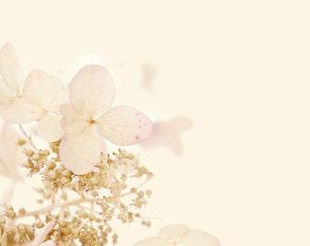 Pretty pink hydrangea-flower photography - flower photo- cottage garden photo (5 x 7 Original fine art photography prints) FREE Shipping)