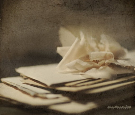 Love Letters Valentine Photography I Love You By