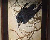 Original Rook watercolor painting 75% OFF ORIGINAL PRICE