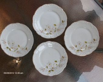 Vintage Hand Painted Daisies on White China - Beautiful