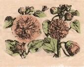 Vintage Wild Rose Patch