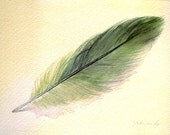 Feather 131- Parrotlet Feather - Original Watercolour - Nightly Study March 17th