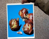 Onions : Foodies Series Print