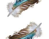 Feathers - Two Mallard Feathers - Blank Card