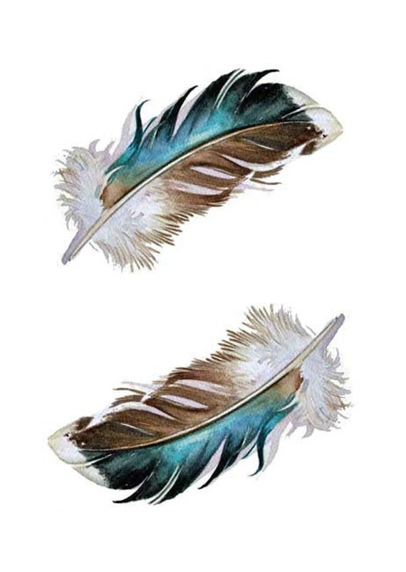 Feathers - Two Mallard Feathers - Blank Card