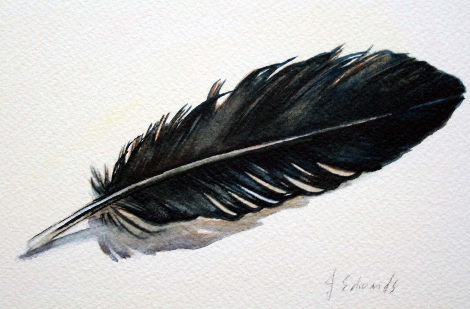 Feather 25 Crow feather Original Watercolour Nightly