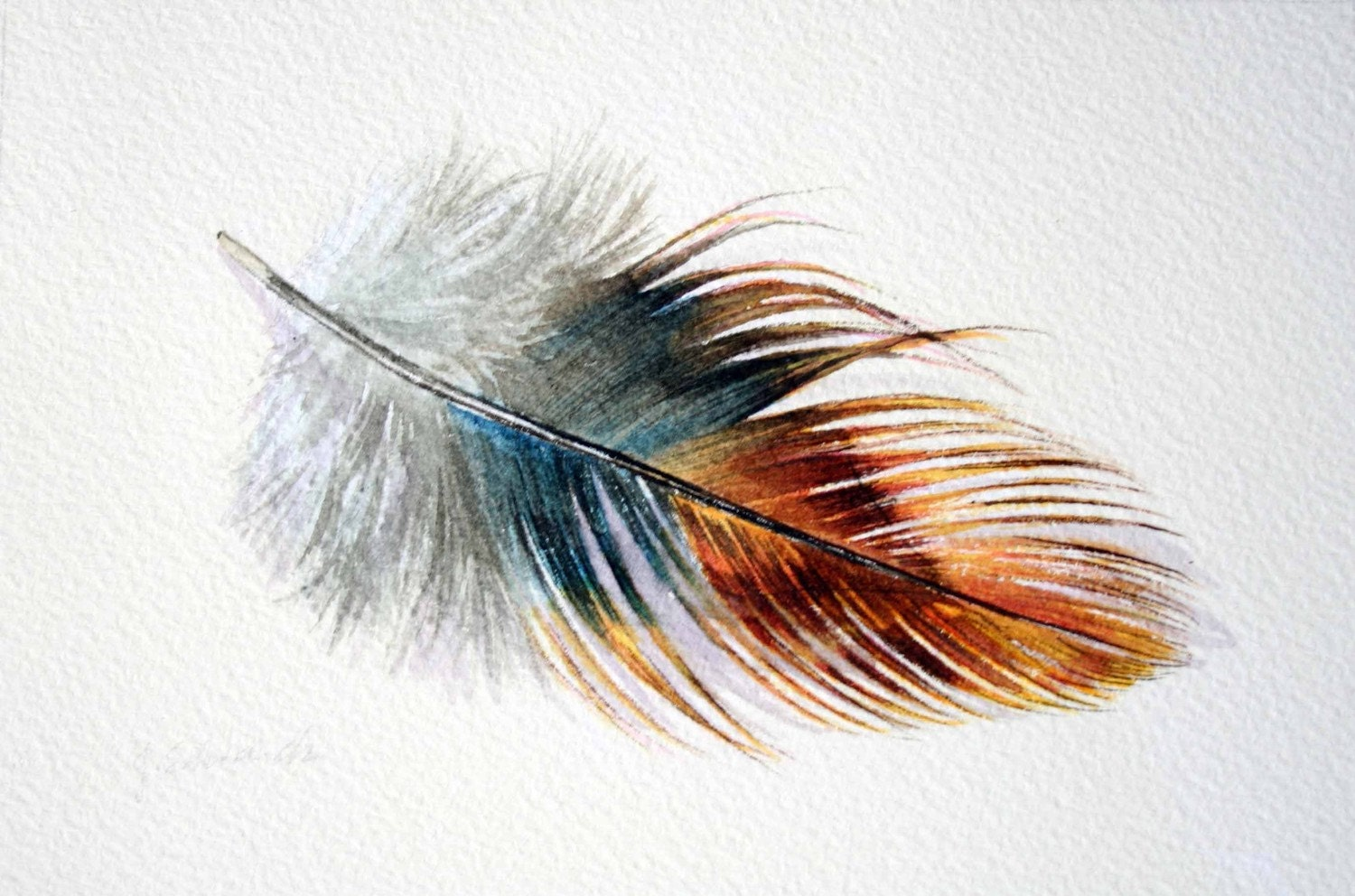 Feather 147 Phoenix Rooster Feather Original Watercolour