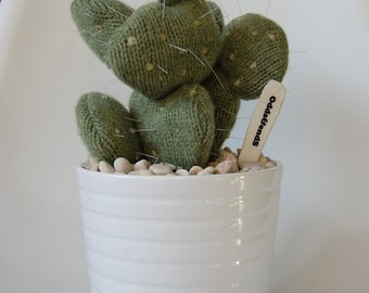 Woollen (knit) Prickly Pear Cactus in Ceramic Pot
