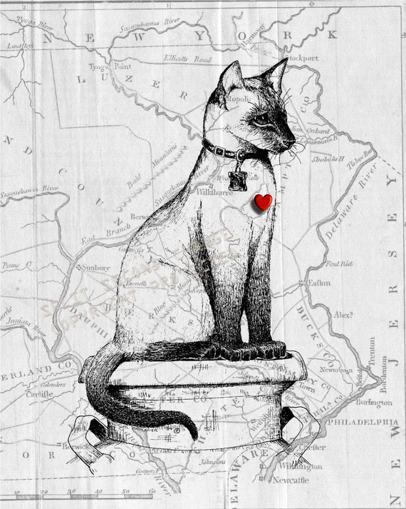 Moon Diamond , Siamese Cat , 1789 Map of  Pennsylvania , Print Pen and Ink Original Art Sketch