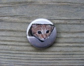 Ceiling Cat - Meme - 1 inch Pin Back Button