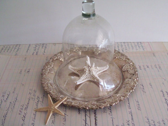 Glass Cloche and Silver Plate Tray Reclaimed Repurposed Glass Cloche Tray Set